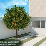 árvore de laranja render revit